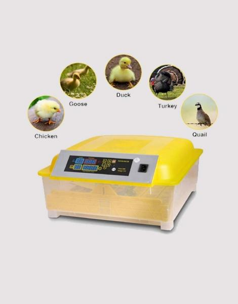 Incubators 48 Egg Incubator Imported Fully Auto